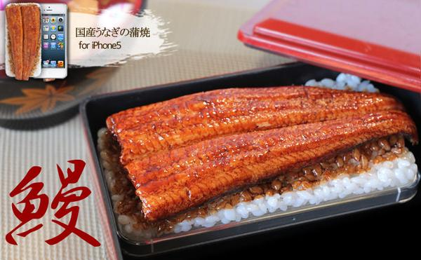 iMeshi Japanese Food Inspired iPhone 5 Case