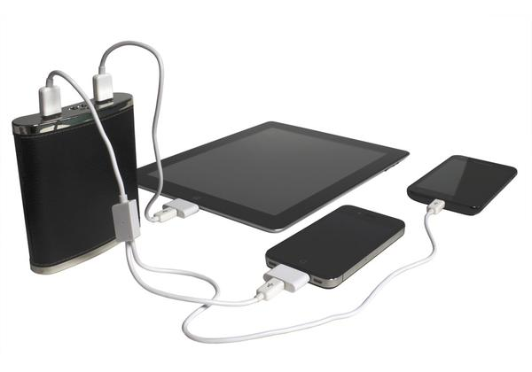 PowerFlask Flask Shaped Backup Battery