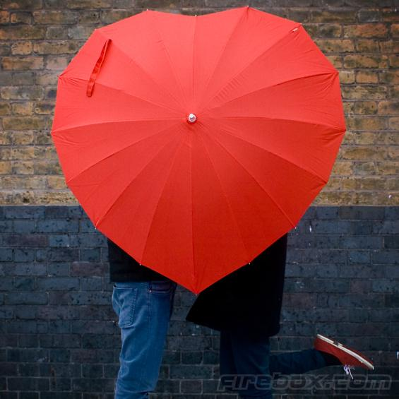 The Heart Shaped Umbrella