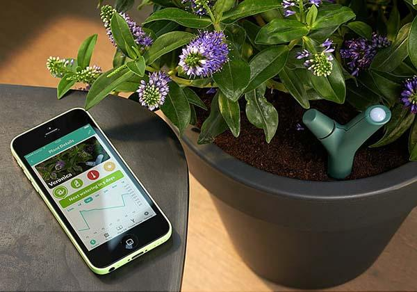 Parrot Flower Power App-Controlled Plant Monitor