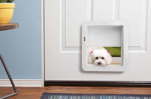 PawDoor App-Enabled Pet Door with Camera, Speaker and Microphone