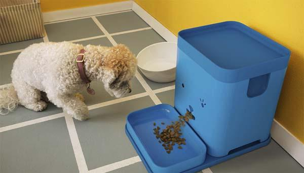 Pawport App-Enabled Smart Pet Feeder