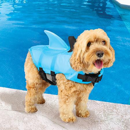 Sea Squirts Shark Fin Inspired Dog Jacket