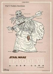 Star Wars Episode VII Poster Set