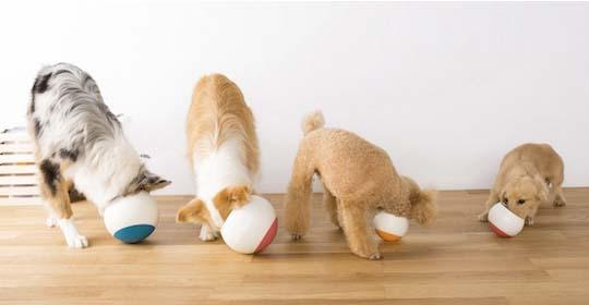 Oppo Food Ball Dog Feeder