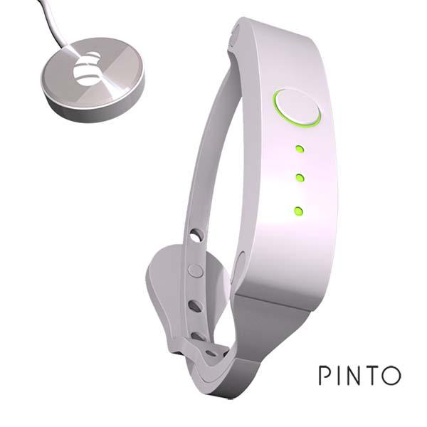 Pinto Bluetooth Storage Wristband