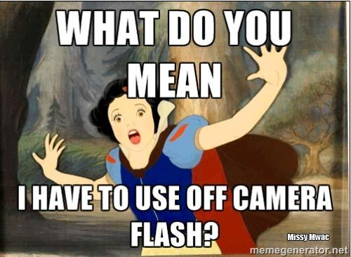 If Disney Princesses Were Photographers
