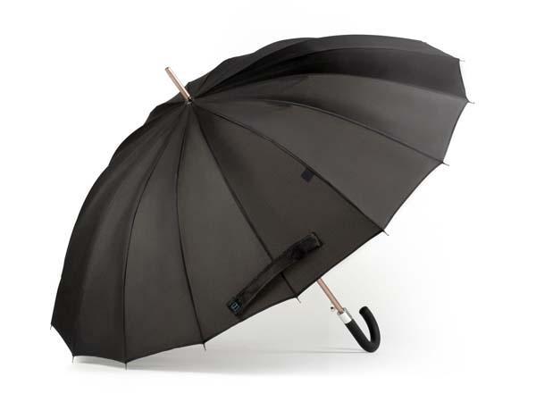 Kisha An App-Enabled Smart Umbrella