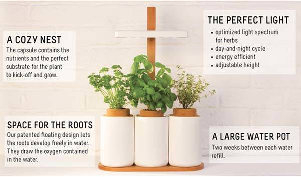 Lilo is an Easy-to-use Plant System with Custom Mobile App