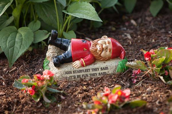 The Garden Gnomes from Star Trek