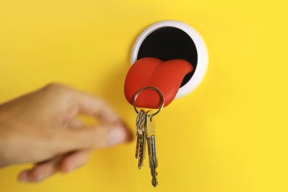 Tongue Magnetic Key Holder