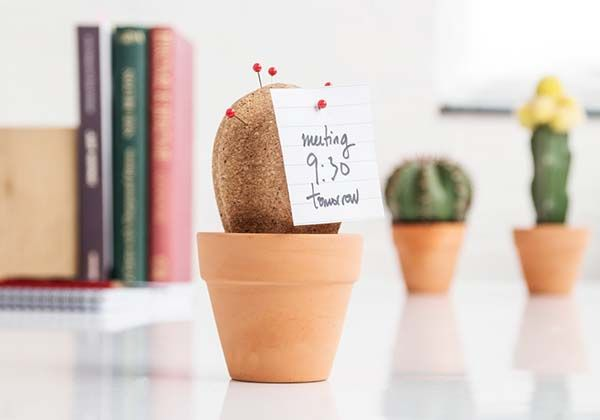 Cork Cactus Prickly Desk Organizer