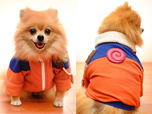 Handmade Naruto Uzumaki and Akatsuki Inspired Dog Costumes