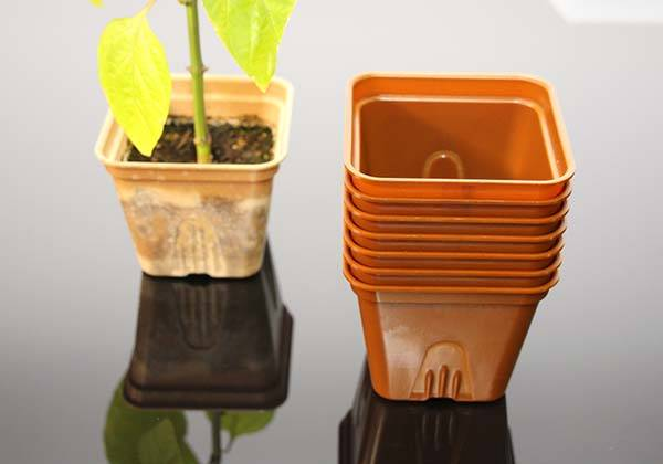 SelfEco Compostable Garden Pot Offers Constant Nutrition for Your Plants