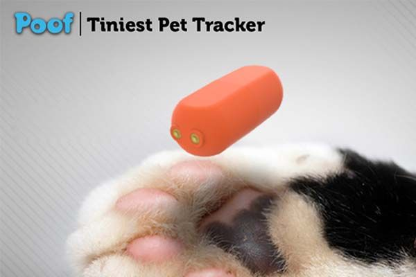 Poof Bean & Pea Bluetooth Pet Trackers