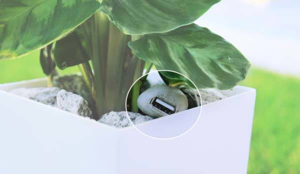 Bioo Lite Plant Pot Charges Your Smartphone With