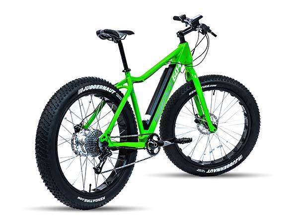 Surface 604 Boar 2016 Electric Bike