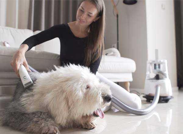 GroomPal Vacuum 3-In-1 Pet Care Tool