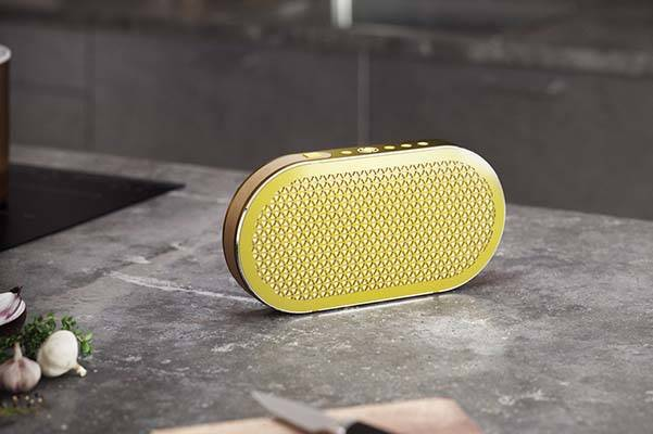 Dali Katch Portable Bluetooth Speaker
