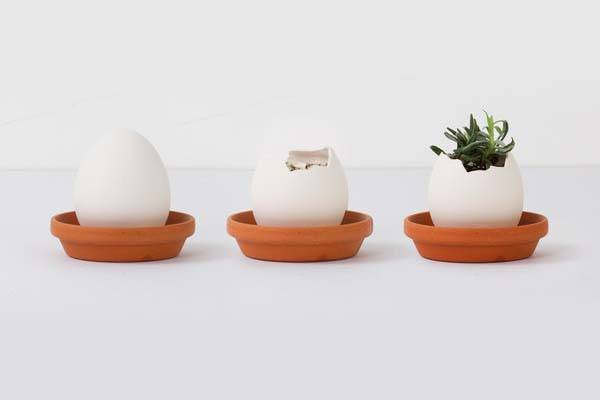 Egglings Egg Shaped Mini Plant Pots