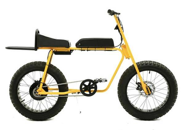 Electric Cargo Bike >> Pineapple Electric Bike with Two Fat Tires | Gadgetsin