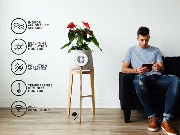 Clairy Smart Flowerpot Acts as a Natural Air Purifier