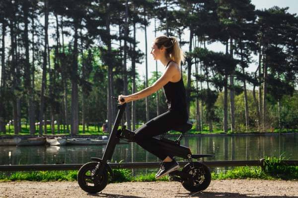 Aero Portable Electric Bike