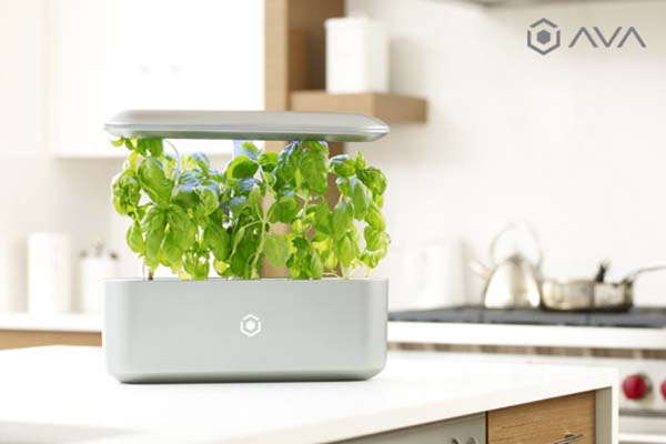 Ava byte smart indoor garden gadgetsin for Indoor gardening gadgets