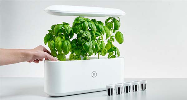 AVA Byte Smart Indoor Garden
