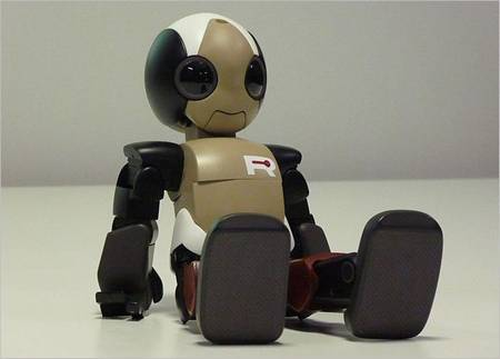 ROPID: A Sweet High-tech Robot